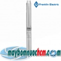 may bom hoa tien fanklin 4 inch